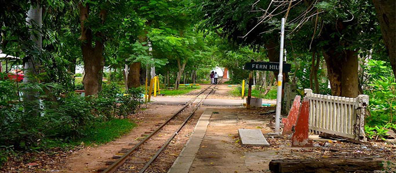 Botanical Garden | Pondicherry